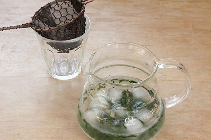 緑茶 水出し